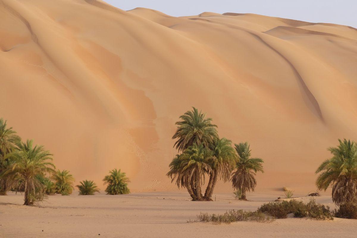 Immagine di Marocco e Mauritania 4x4
